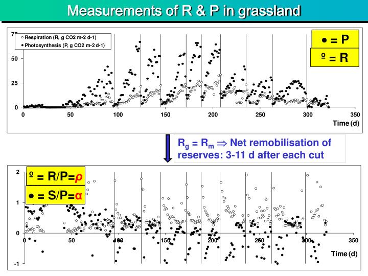 Measurements of R & P in grassland