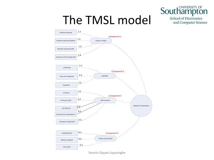 The TMSL model