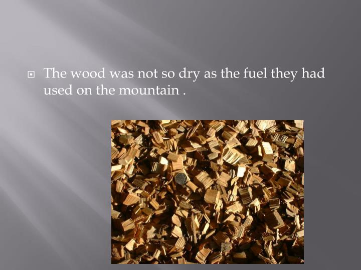 The wood was not so dry as the fuel they had used on the mountain .