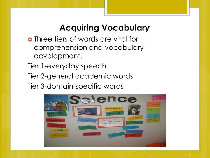 Acquiring Vocabulary