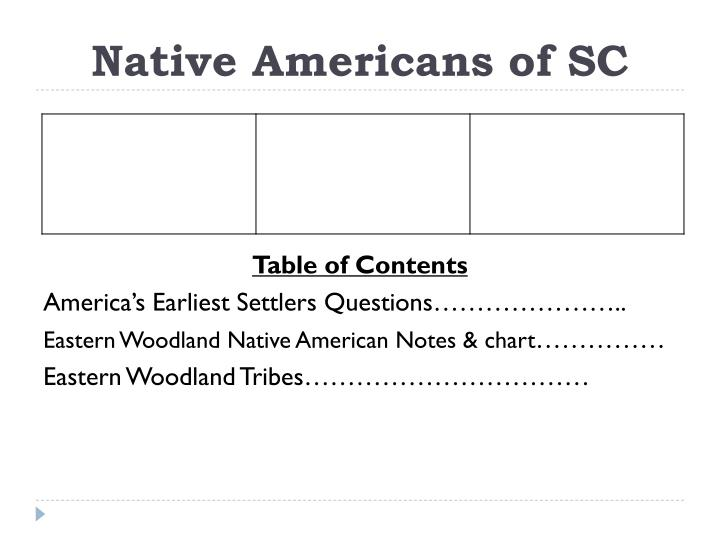 Native americans of sc
