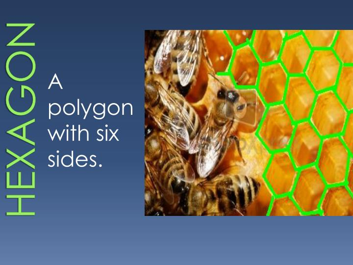 Hexagon