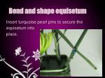 bend and shape equisetum