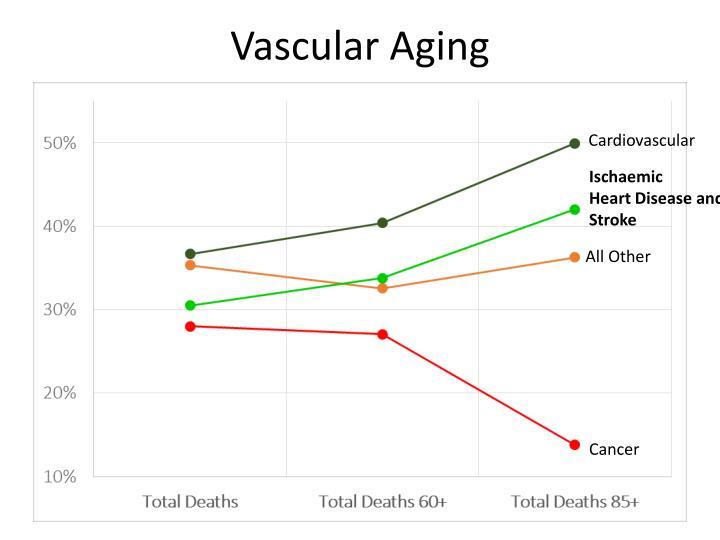 Vascular Aging