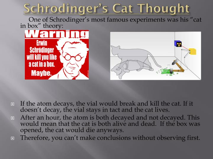 Schrodinger's Cat Thought