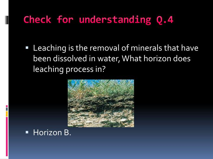 Check for understanding Q.4