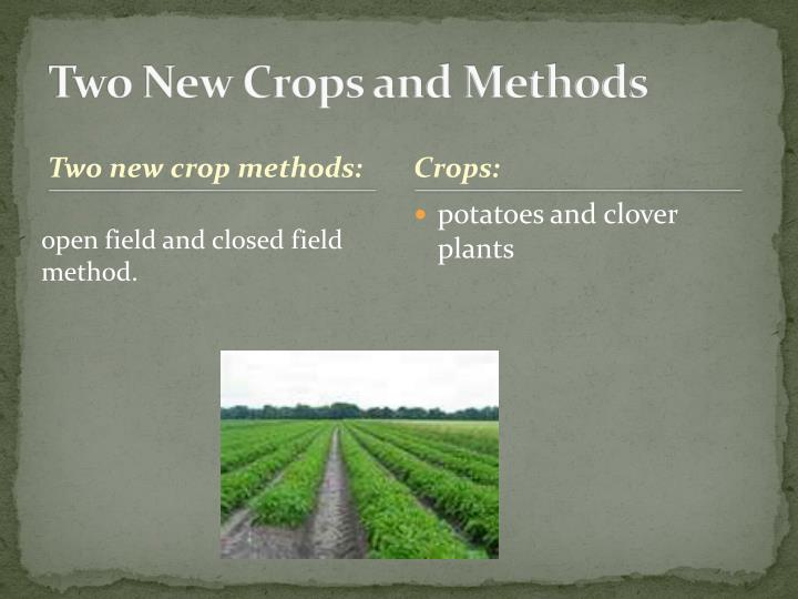 Two New Crops and Methods