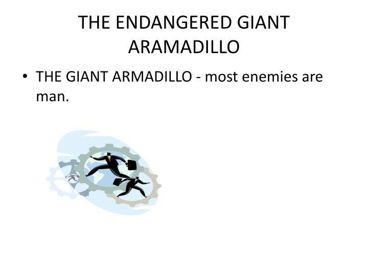 THE ENDANGERED GIANT ARAMADILLO