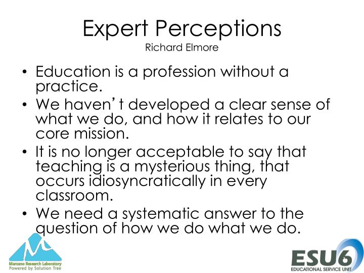 Expert perceptions richard elmore