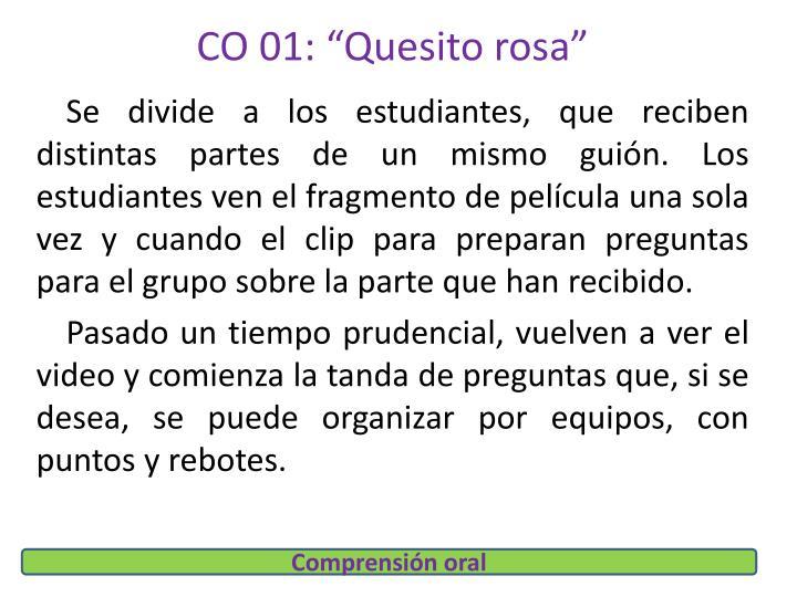 """CO 01: """"Quesito rosa"""""""