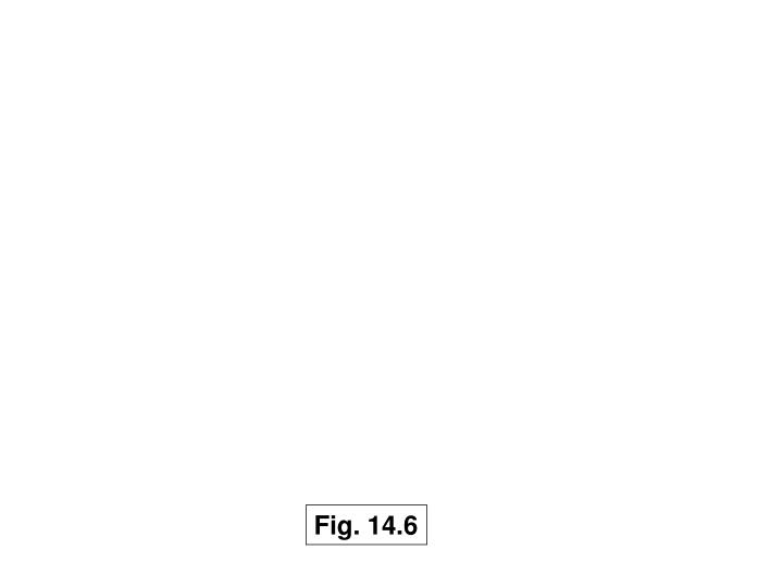 Fig. 14.6