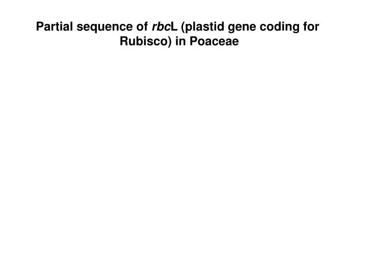 Partial sequence of