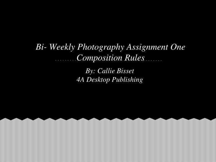 Bi weekly photography assignment one composition rules