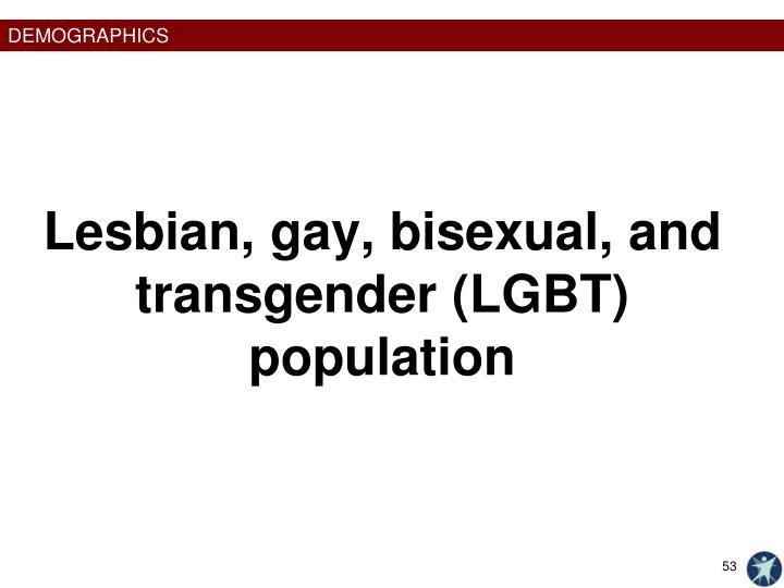 Lesbian, gay, bisexual, and transgender (LGBT) population