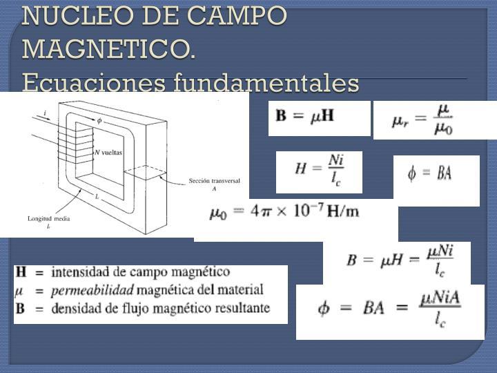 NUCLEO DE CAMPO MAGNETICO.