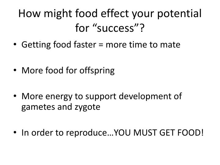 "How might food effect your potential for ""success""?"