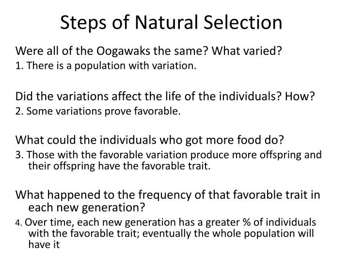 Steps of Natural Selection