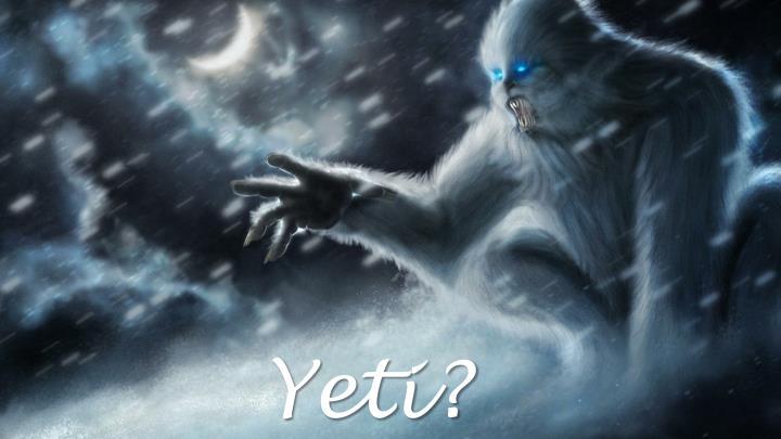 Yeti?