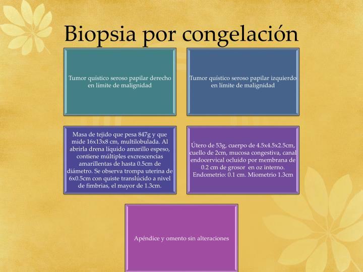 Biopsia por congelación