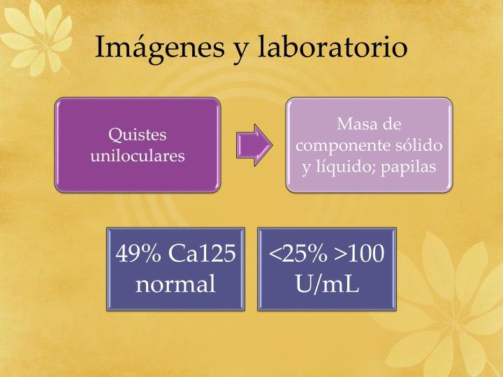 Imágenes y laboratorio
