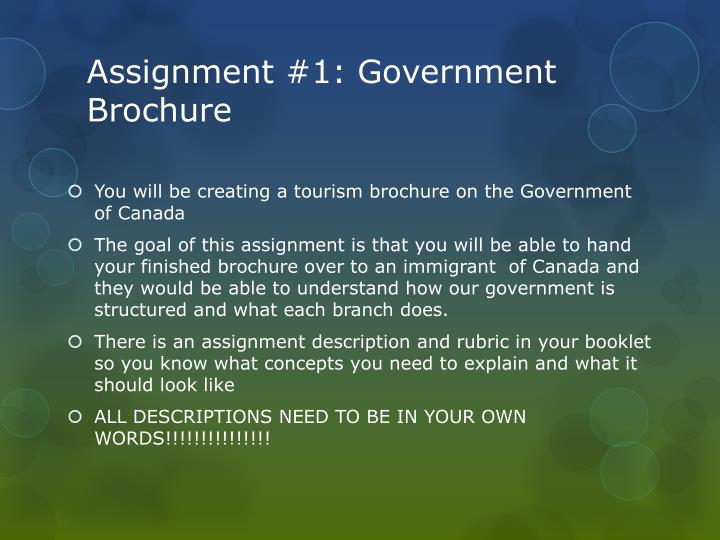 Assignment #1: Government Brochure