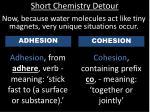 short chemistry detour4