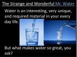 the strange and wonderful mr water