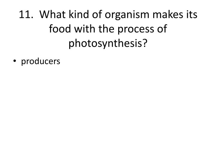 11.  What kind of organism makes its food with the process of photosynthesis?
