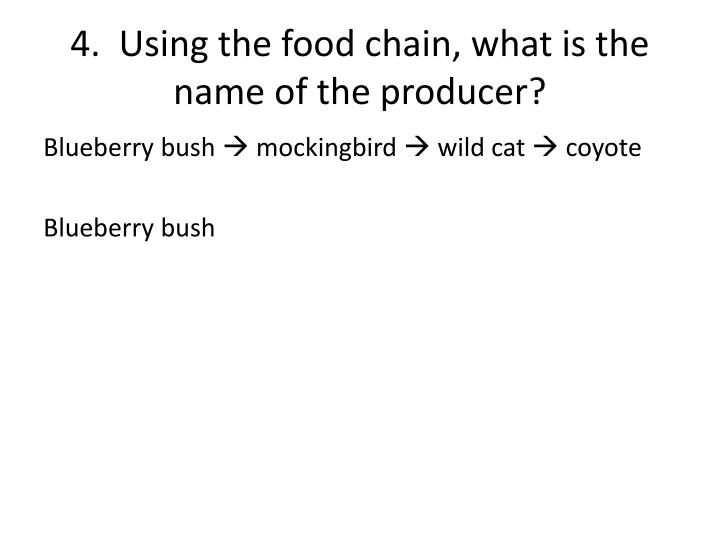 4.  Using the food chain, what is the name of the producer?