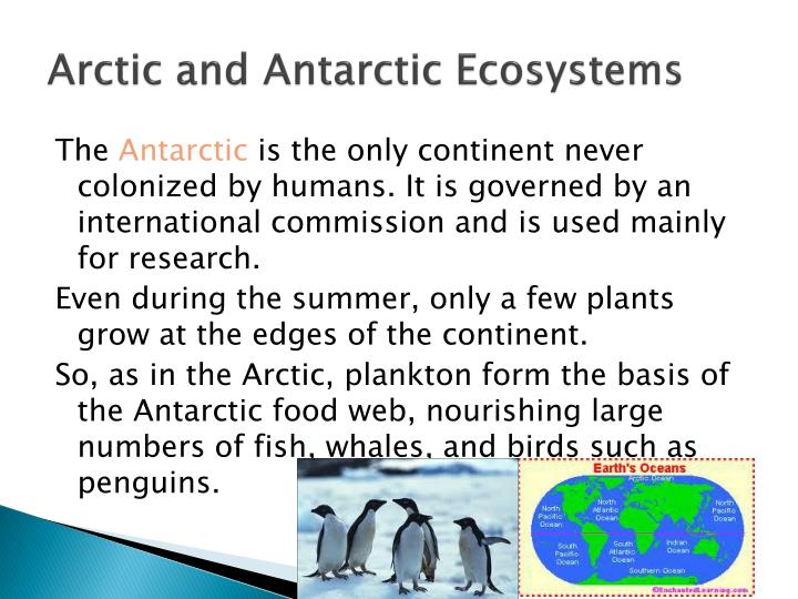 Arctic and Antarctic Ecosystems