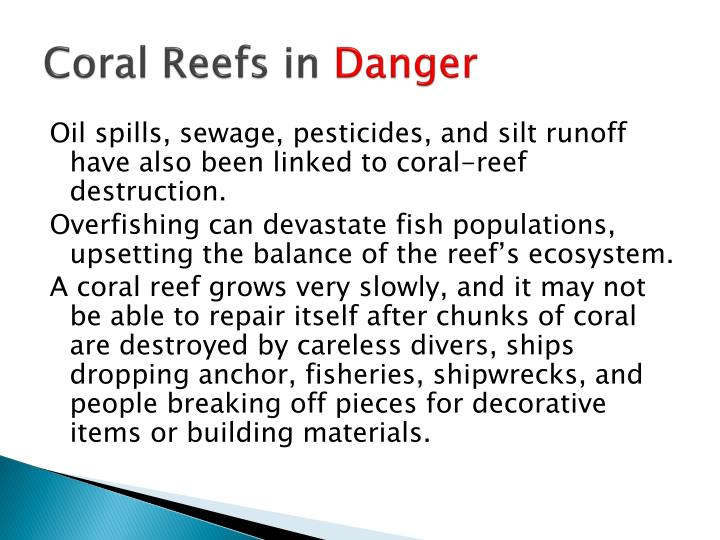 Coral Reefs in