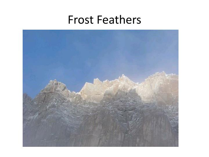 Frost feathers
