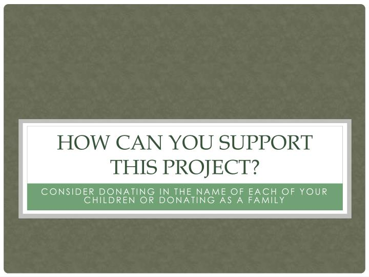 How can you support this project?