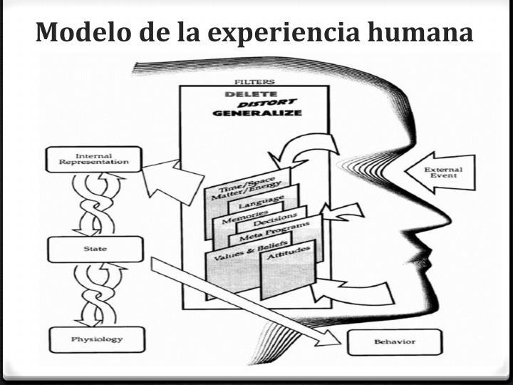 Modelo de la experiencia humana