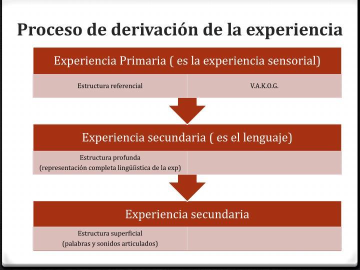 Proceso de derivación de la experiencia