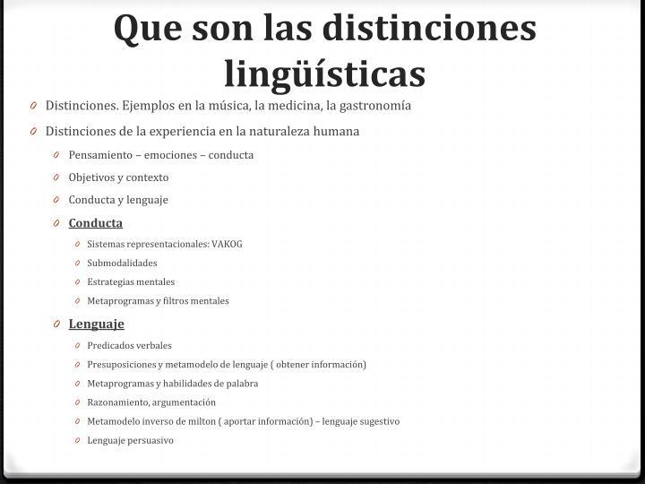 Que son las distinciones lingüísticas
