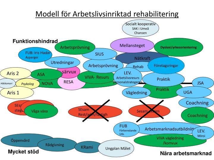 Modell för Arbetslivsinriktad rehabilitering