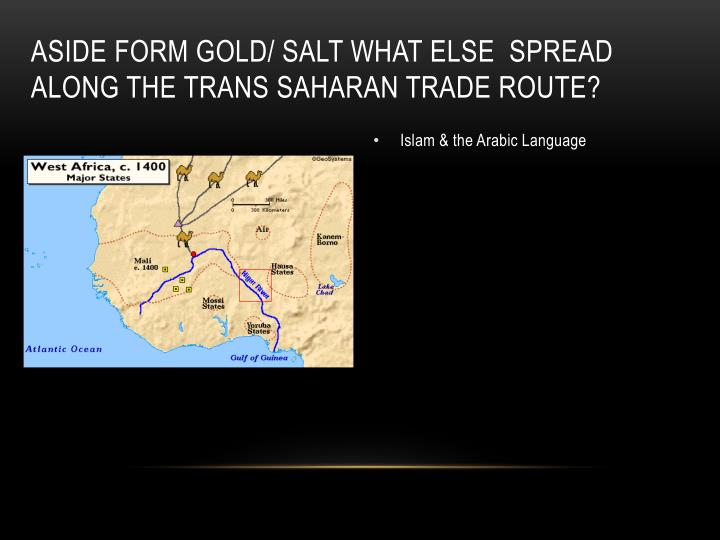 Aside form gold/ salt what else  spread along the Trans Saharan Trade Route?