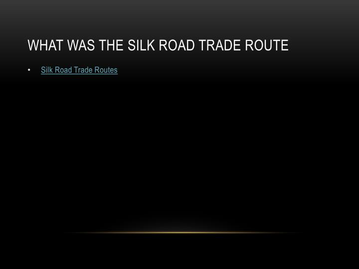 What was the silk Road Trade Route