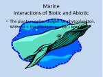 marine interactions of biotic and abiotic
