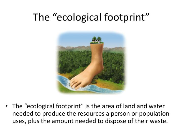 "The ""ecological footprint"""