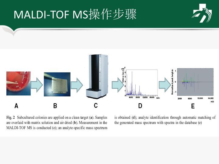 MALDI-TOF MS