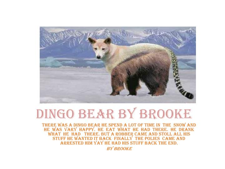 Dingo bear by brooke