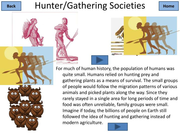Hunter gathering societies