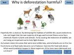 why is deforestation harmful2
