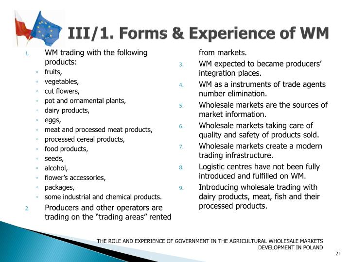 III/1. Forms & Experience of WM