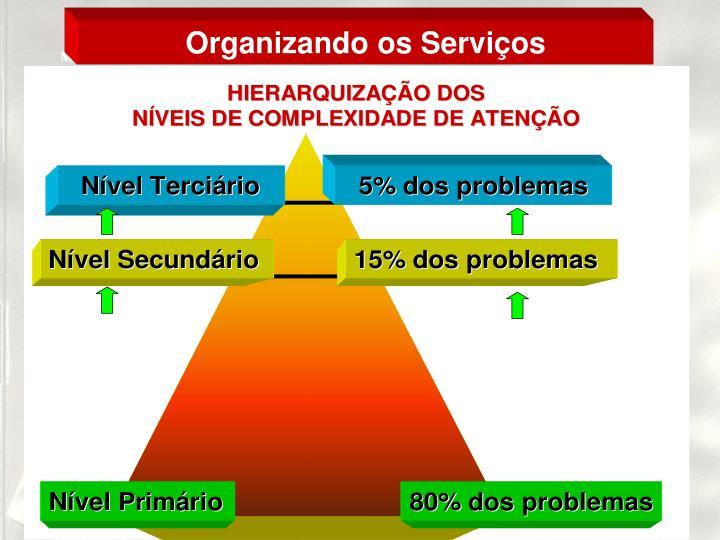 Organizando os Serviços