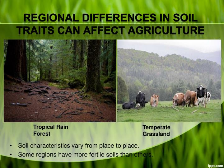 Regional Differences in Soil Traits Can Affect Agriculture