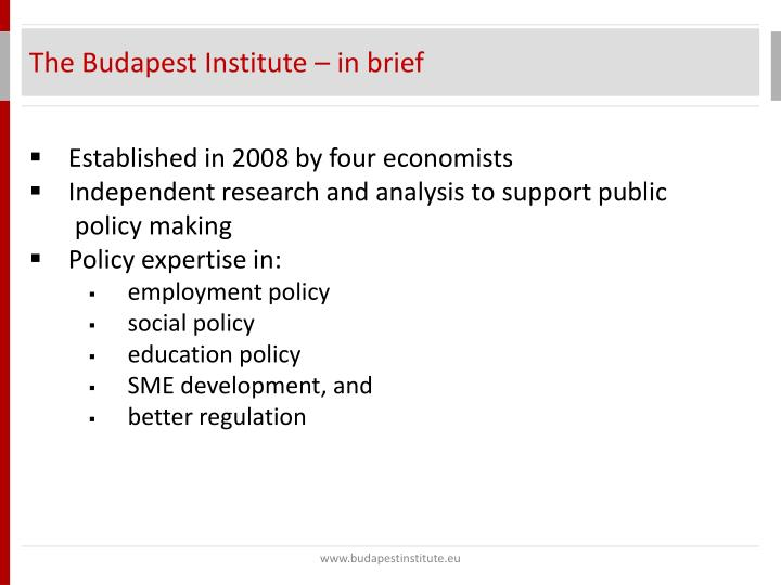 The Budapest Institute – in brief
