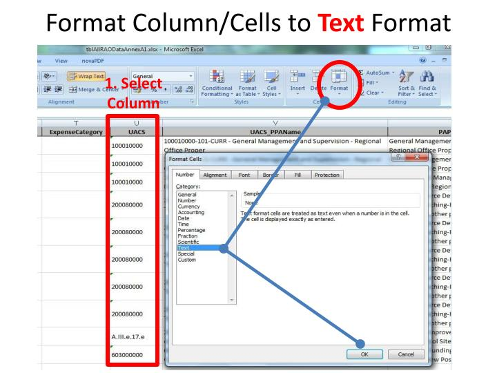 Format Column/Cells to